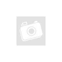 PC- Caselüfter XILENCE Performance C case fan 120 mm, transparent blue LED, XPF120.TBL