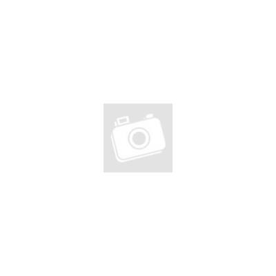 PC- Caselüfter XILENCE Performance C case fan 120 mm, transparent red LED, XPF120.TR